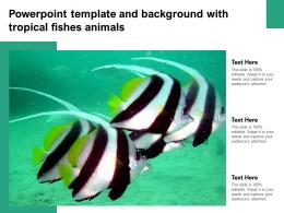 Powerpoint Template And Background With Tropical Fishes Animals