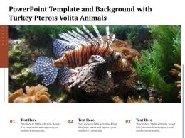 Powerpoint Template And Background With Turkey Pterois Volita Animals