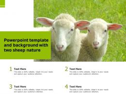 Powerpoint Template And Background With Two Sheep Nature