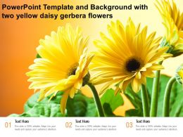 Powerpoint Template And Background With Two Yellow Daisy Gerbera Flowers