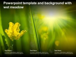 Powerpoint Template And Background With Wet Meadow