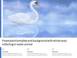 Powerpoint Template And Background With White Swan Reflecting In Water Animal