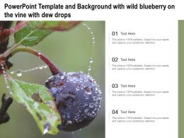Powerpoint Template And Background With Wild Blueberry On The Vine With Dew Drops