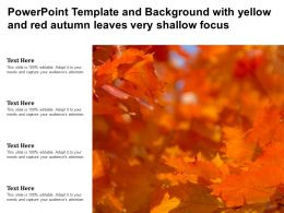 Powerpoint Template And Background With Yellow And Red Autumn Leaves Very Shallow Focus