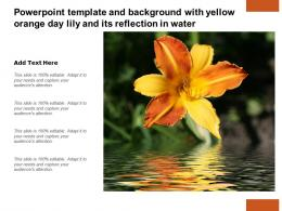 Powerpoint Template And Background With Yellow Orange Day Lily And Its Reflection In Water