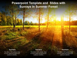 Powerpoint Template And Slides With Sunrays In Summer Forest