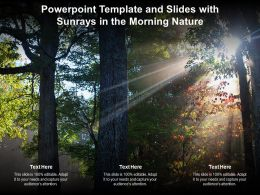 Powerpoint Template And Slides With Sunrays In The Morning Nature