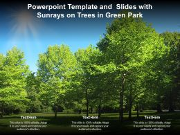 Powerpoint Template And Slides With Sunrays On Trees In Green Park