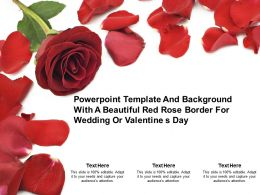 Powerpoint Template Background With A Beautiful Red Rose Border For Wedding Or Valentine S Day