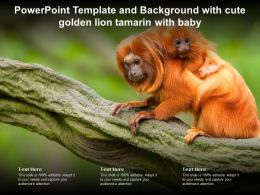 Powerpoint Template Background With Cute Golden Lion Tamarin With Baby Ppt Powerpoint