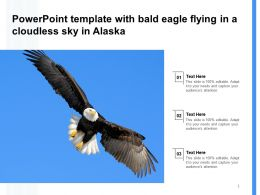 Powerpoint Template With Bald Eagle Flying In A Cloudless Sky In Alaska