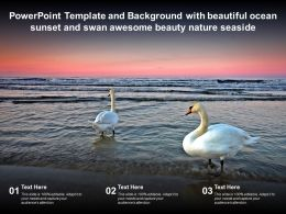 Powerpoint Template With Beautiful Ocean Sunset And Swan Awesome Beauty Nature Seaside