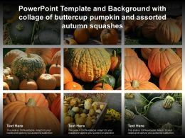 Powerpoint Template With Collage Of Buttercup Pumpkin And Assorted Autumn Squashes