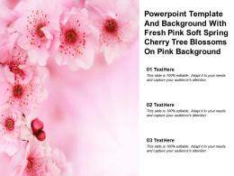Powerpoint Template With Fresh Pink Soft Spring Cherry Tree Blossoms On Pink Background