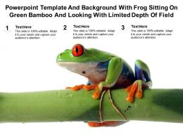 Powerpoint Template With Frog Sitting On Green Bamboo And Looking With Limited Depth Of Field