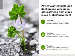 Powerpoint Template With Green Grass Growing From Crack In Old Asphalt Pavement