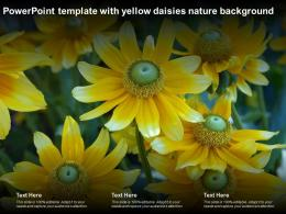 Powerpoint Template With Yellow Daisies Nature Background