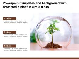 Powerpoint Templates And Background With Protected A Plant In Circle Glass