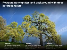 Powerpoint Templates And Background With Trees In Forest Nature
