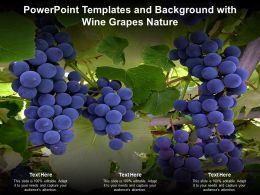 Powerpoint Templates And Background With Wine Grapes Nature