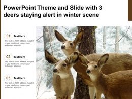 Powerpoint Theme And Slide With 3 Deers Staying Alert In Winter Scene