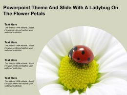 Powerpoint Theme And Slide With A Ladybug On The Flower Petals