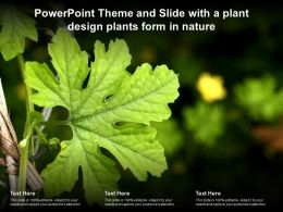 Powerpoint Theme And Slide With A Plant Design Plants Form In Nature