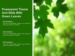 Powerpoint Theme And Slide With Green Leaves