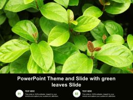 Powerpoint Theme And Slide With Green Leaves Slide