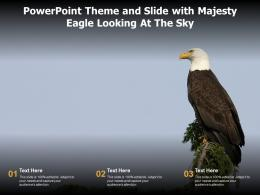 Powerpoint Theme And Slide With Majesty Eagle Looking At The Sky