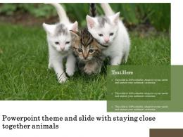 Powerpoint Theme And Slide With Staying Close Together Animals