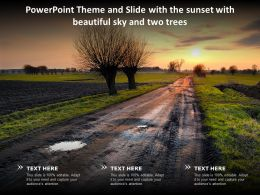 Powerpoint Theme And Slide With The Sunset With Beautiful Sky And Two Trees