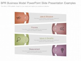 Ppt Bpr Business Model Powerpoint Slide Presentation Examples