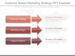 Ppt Customer Based Marketing Strategy Ppt Example