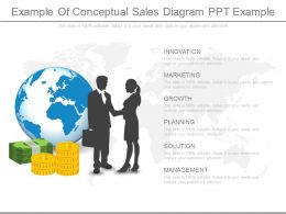 Ppt Example Of Conceptual Sales Diagram Ppt Example