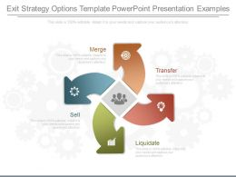 Ppt Exit Strategy Options Template Powerpoint Presentation Examples