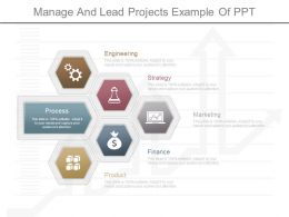 Ppt Manage And Lead Projects Example Of Ppt