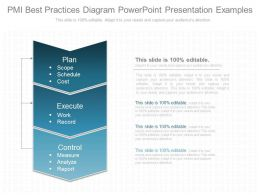 Ppt Pmi Best Practices Diagram Powerpoint Presentation Examples