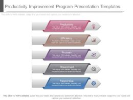 Ppt Productivity Improvement Program Presentation Templates