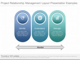 Ppt Project Relationship Management Layout Presentation Examples