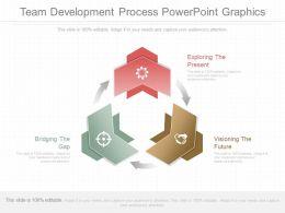 Ppt Team Development Process Powerpoint Graphics