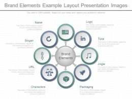 Ppts Brand Elements Example Layout Presentation Images
