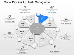 ppts Circle Process For Risk Management Powerpoint Template