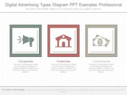 Ppts Digital Advertising Types Diagram Ppt Examples Professional