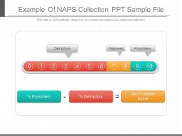 Ppts Example Of Naps Collection Ppt Sample File