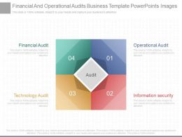 Ppts Financial And Operational Audits Business Template Powerpoints Images