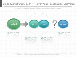Ppts Go To Market Strategy Ppt Powerpoint Presentation Examples