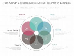 Ppts High Growth Entrepreneurship Layout Presentation Examples