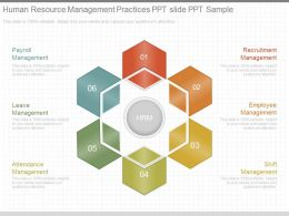 Ppts Human Resource Management Practices Ppt Slide Ppt Sample