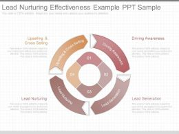 Ppts Lead Nurturing Effectiveness Example Ppt Sample